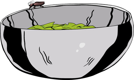 disgusting animal: Illustration of stainless steel bowl with cockroach on top Illustration