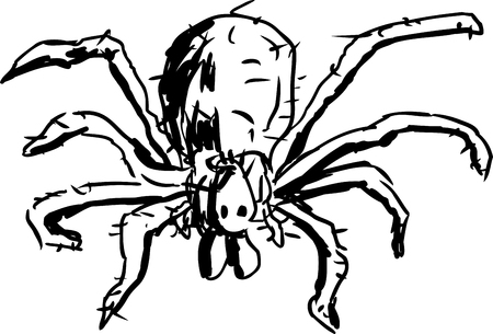 hobo: Close up top down view of outlined hobo spider over white background