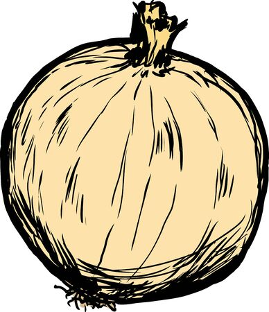 sketch out: Hand drawn single raw white onion with skin cartoon over white background Illustration