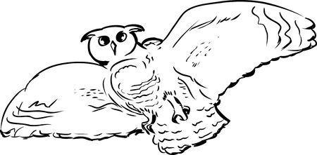 widespread: Low angle view illustration of owl with widespread wings in mid air Illustration