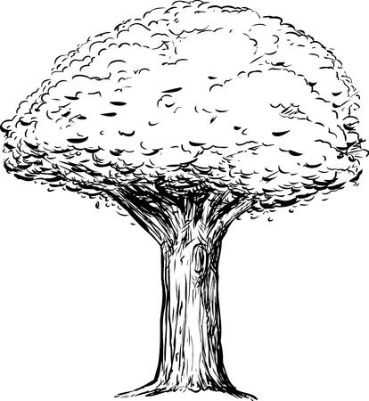 Outline schets van de boom met een dikke stam op een witte achtergrond Stock Illustratie