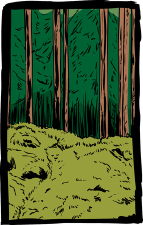 Hand drawn doodle illustration of rugged forest wilderness and mossy forest floor