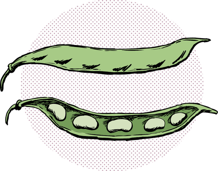 Legume illustration with whole and split bean pods over halftone circle.