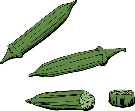 Whole and cross-section view of okra pod over white background