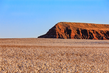 Connon fields grow around the buttes near Gloss Mountains State Park in Oklahoma.