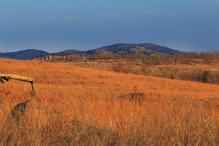 Natural beauty along the prairies and rock formations of the Wichita Mountains National Wildlife Refuge located in Indiahoma, Oklahoma 2018
