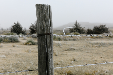 Close up of a post holding barbed wire fence bordering the Lake Scott State Park in western Kansas, February 2019