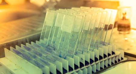 science medical glass microscope slide