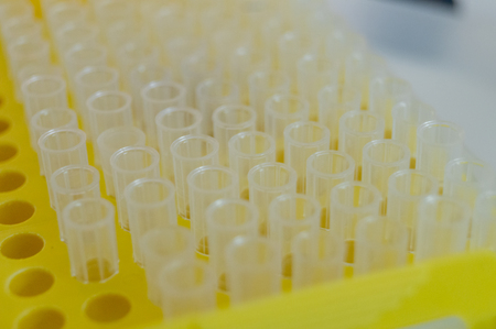 plastic tube used in biochemical analysis.
