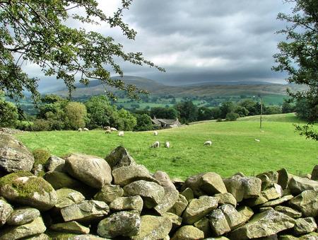 yorkshire dales: granja situada en el Yorkshire Dales