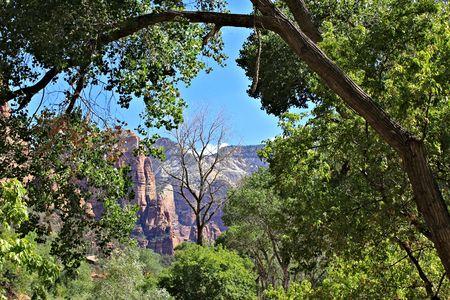 zion: Zion, Utah
