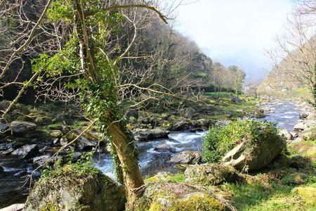 lynmouth: river lyn