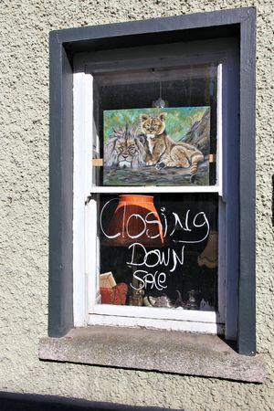 shop window: shop window