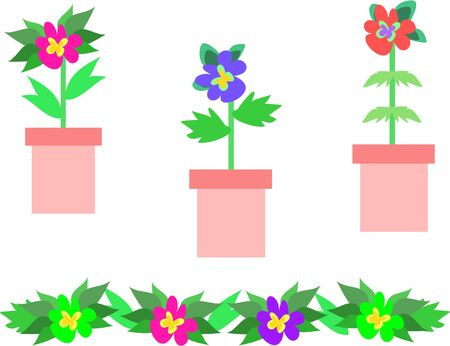 Collection of Flower Pots and Flowers