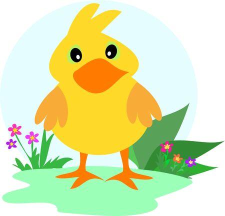 baby duck: Baby Duck