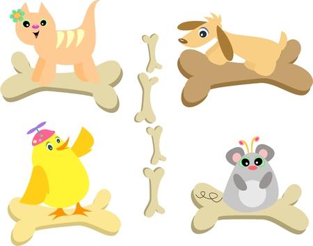 Mix of Bones and Animals