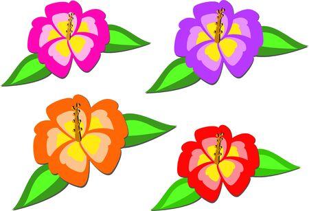 Mix van kleurrijke tropische Hibiscus Stock Illustratie