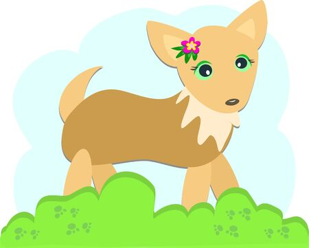 Chihuahua Dog with a Flower