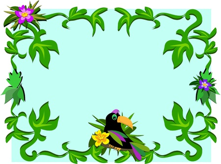 Frame of Toucan, Plants, and Hibiscus Stock Vector - 9208471