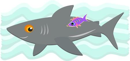Gray Shark and Purple Fish Vector