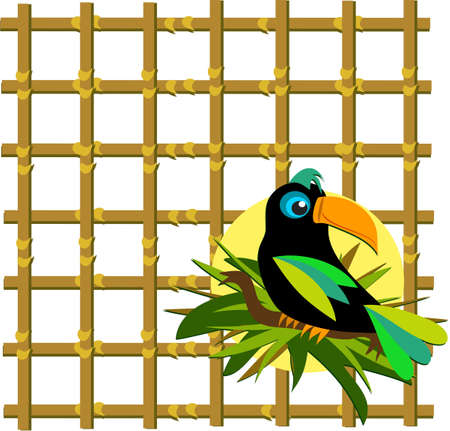 Toucan with Bamboo Grid Illustration