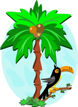 Toucan and Palm Tree Vector