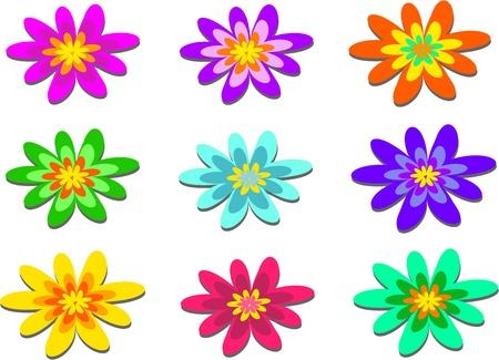 pom pom: Mix of Pom Pom Flowers Illustration