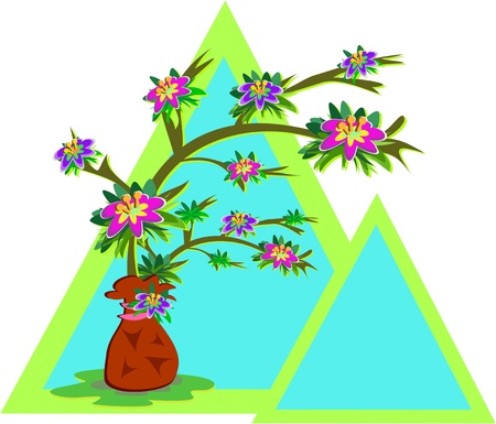 Frames of Triangles and Potted Flower Plant