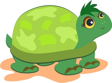Cute Green Turtle  Vector