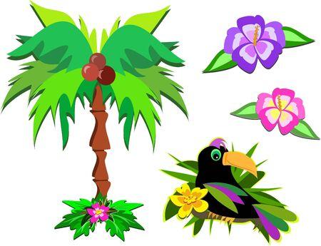 Mix of Tropical Life