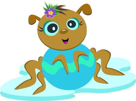 Baby Spider Posing