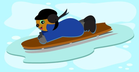 Dog on a Sled Vector