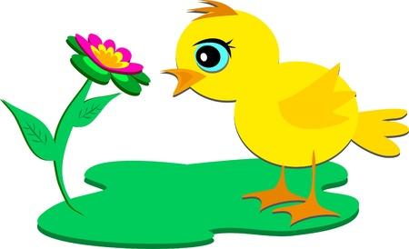 Chick Admiring a Flower