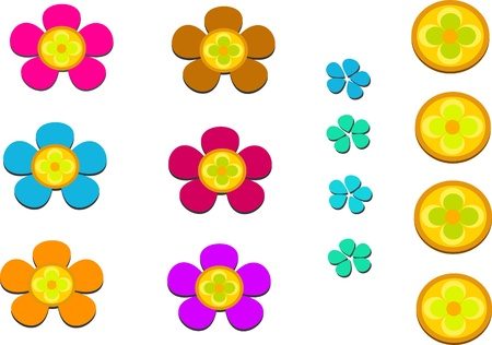 Mix of Flowers and Petals