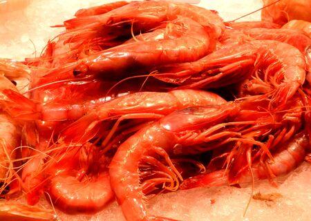 la boqueria: Fresh shrimps at La Boqueria market, Barcelona, ??Spain