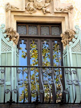 arboles frondosos: Decorated window reflecting leafy trees Foto de archivo