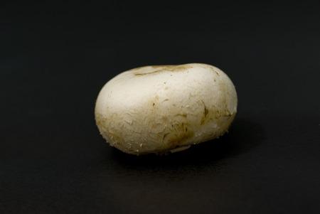 Mushroom cap on black background Stock Photo