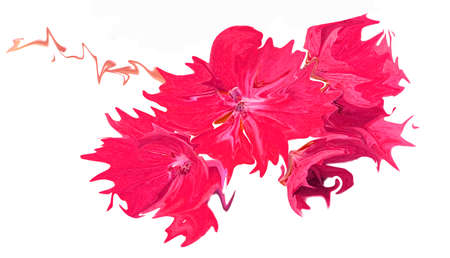 Abstract pink flower illustration Фото со стока