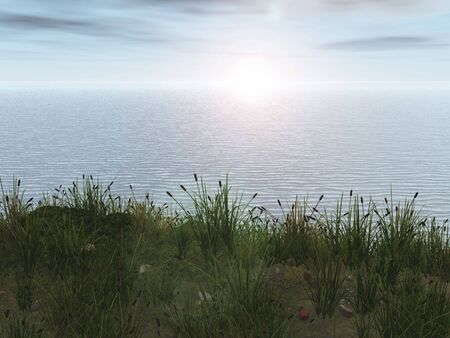 cattail: Ocean with cattails and grass illustration