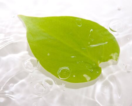 Leaf floating in water with waves and bubbles Stock Photo