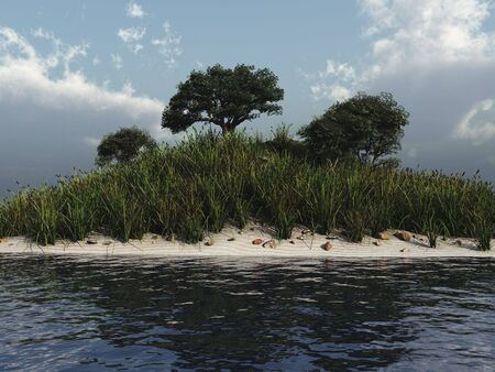 Trees with sand and water nature 3d illustration