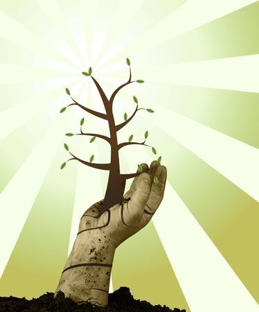 Human handing helping green grow with grunge background Stock Photo