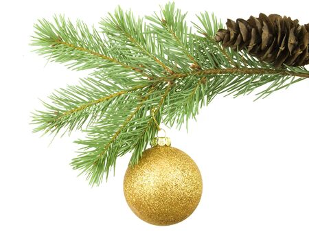 Golden bauble hanging on branch with white background