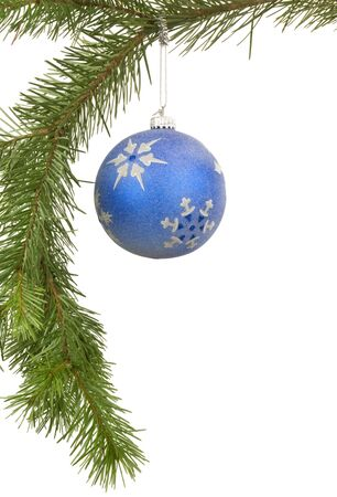 Bauble hanging on branch with white background Imagens