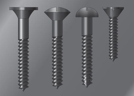 screw head: four models of screw head styles