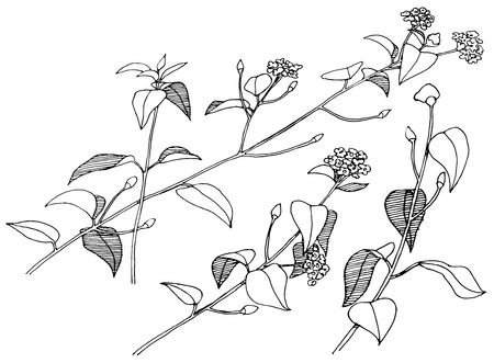 Hand drawn branches with flowers. Vector.