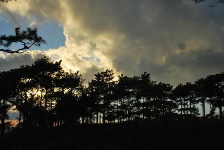 phukradueng: The sunset at Phukradueng