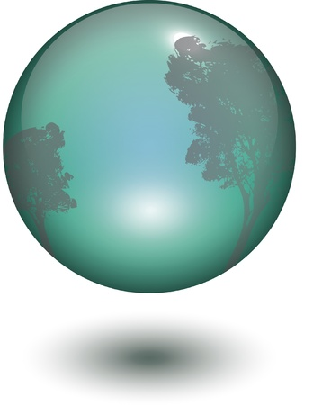 glass ball with outside or inside reflection  trees or windows