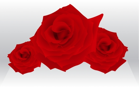 three layered: three roses for female holiday, fully editable, layered