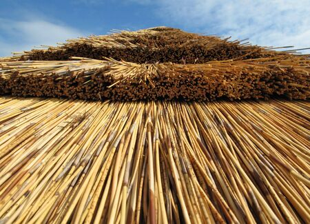 Closeup of Thatched Roof - Gloucester